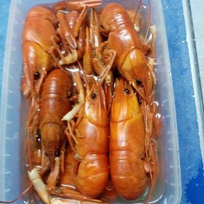 Seafood Обнинск: Астраханские раки в/м в фирменном рассоле