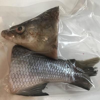 Seafood Обнинск: Набор для ухи из Муксуна